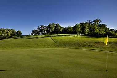 wirth_golf_green2