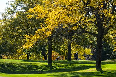 Theodore_Wirth_Golf_Course_fall1