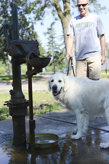 Lake Calhoun Parkway_Dogs Water Well