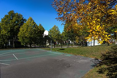 Cavell_Park_basketball