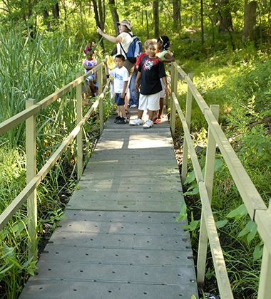 wirth_park_quaking_bog_boardwalk