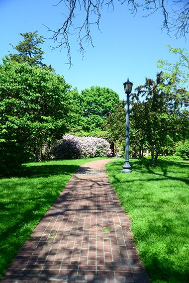 Thomas_Lowry_Park_walkingpath