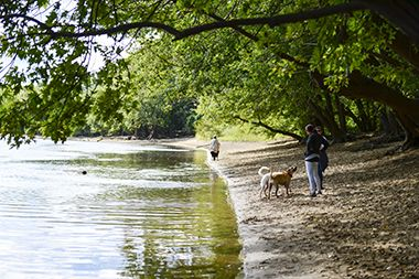 Minnehaha_Dog_Park_river