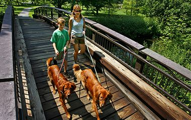 trails_minnehaha_creek_dogs