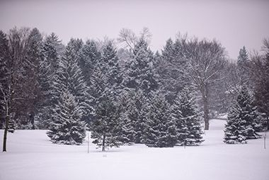 Valley_View_Park_winter
