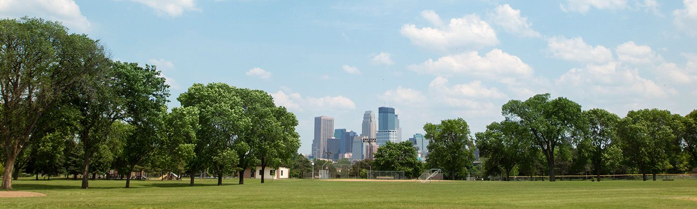 bryn mawr meadows park skyline view