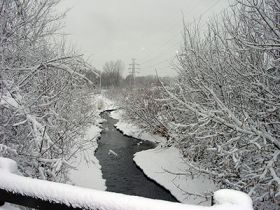 bassett creek in winter