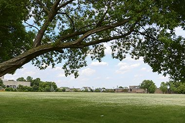 Bethune_Park_greenspace