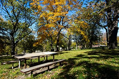 Deming_Heights_Park_picnic