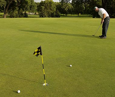 all_golf_putting2