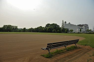 Marshall_Terrace_Park_baseball