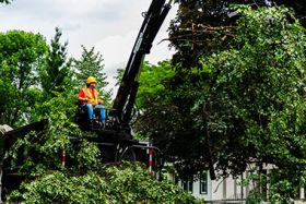 Minneapolis Storm Cleanup