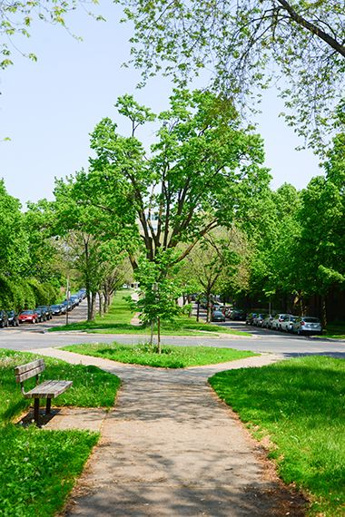 The_Mall_Park_greenspace