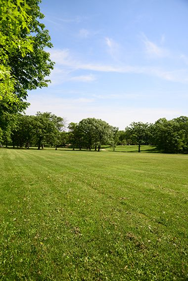 Valley_View_Park_greenspace1