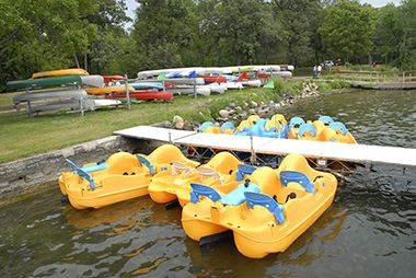 rental_paddleboat_harriet