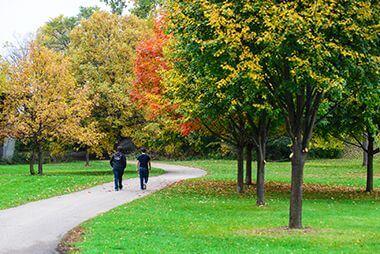 Bassett's Creek Park in the Fall