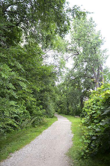 Walking path along the river