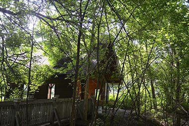 Roberts Bird Sanctuary
