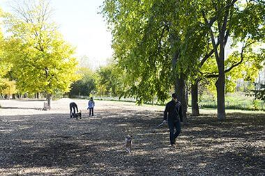 St. Anthony Parkway Off-Leash Dog Park