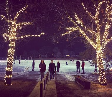 Lighted skating rink at night with lit trees