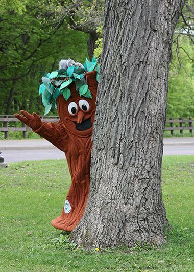 Elmer The Elm Tree