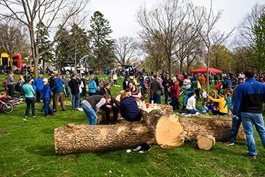 Arbor Day 2017 at Lake Hiawatha