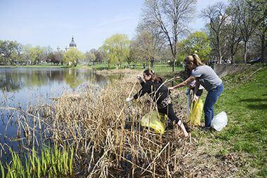 Cleanup at Loring Park