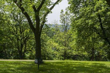 Norwegian Hill, Deming Heights ParkNorwegian Hill, Deming Heights Park