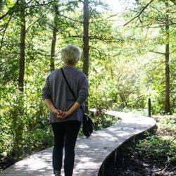 Eloise_Butler_Wildflower_Garden_boardwalk2-1