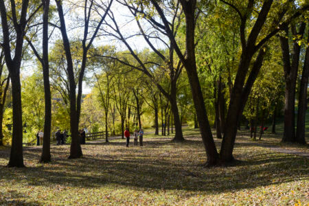 Fall activities in BF Nelson Park.