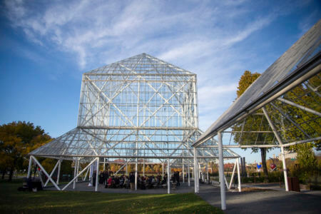 A wedding at the Cowles Conservatory at the Minneapolis Sculpture Garden.